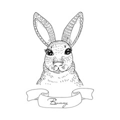 Rabbit sketch. Hand drawn vector illustration.