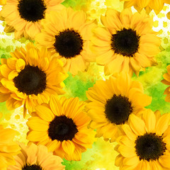 Retro seamless pattern with photo sunflowers on watercolor textu