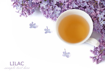 Cup of tea with lilac flowers isolated on white background. Summer tea time concept. Breakfast tea cup served with flowers.