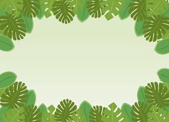 南国の植物・葉っぱのフレーム・コピースペース・背景素材 ベクター 長方形
