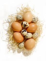 Uova miste nella paglia
