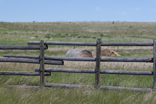 Montana fence and hay