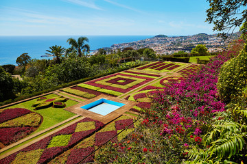 Famous botanical garden in Funchal, Madeira, Portugal Fototapete