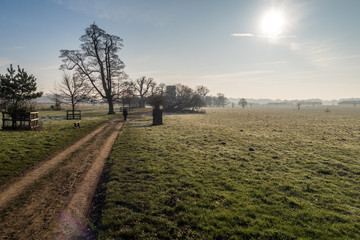 Country landscape in winter on an English estate
