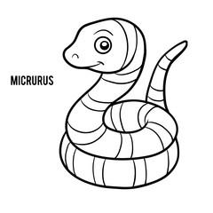 Coloring book, Micrurus