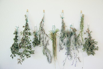 Fresh Dried Organic Herbs from Garden