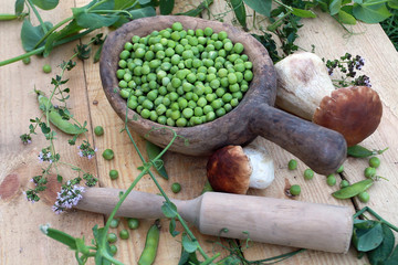 A beautiful still-life in the rustic style consists of their green fresh peas in old wooden utensils, a large white edible mushroom, a pistil and green shoots spread out on a rough wooden table.