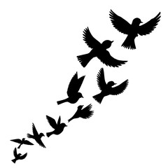 vector flying birds silhouettes