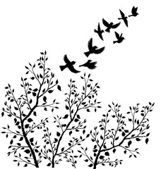 vector flying birds silhouettes and tree foliage