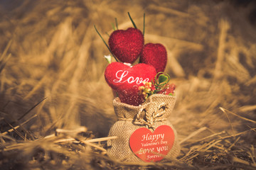 Heart-shaped Valentine's Day gifts in a sack on the hay.