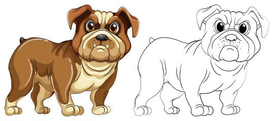Animal outline for dog