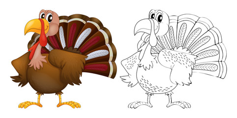Animal outline for turkey