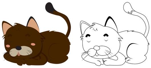 Animal outline for kitten