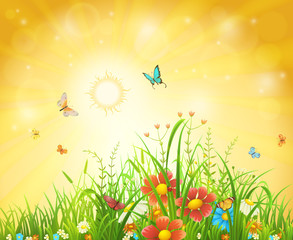 Bright summer vector background with sun, flowers, butterflies and grass
