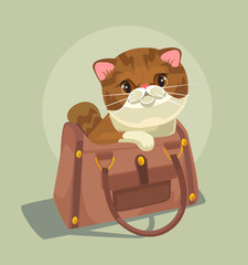 Small cat character sitting in lady bag. Vector flat cartoon illustration