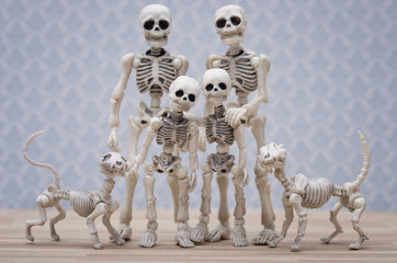 Skeleton family portrait with pets