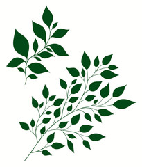 Isolated vector illustration of stylized branches with foliage