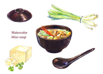 Miso sup set. Watercolor illustrations.