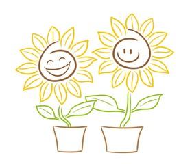 Sonnenblume Smiley Gesicht