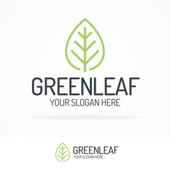 Green leaf logo set clean line style for use organic shop, ecology company, nature firm, natural product, alternative medicine, green unity, garden, farming, forest etc. Vector Illustration