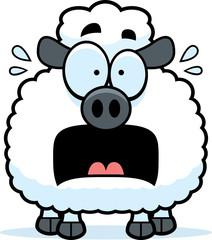 Scared Little Lamb