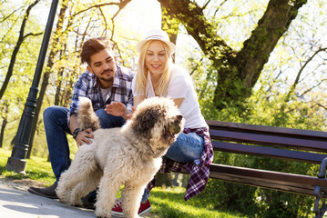 Young loving couple relaxing on the bench in park with a dog on beautiful sunny day