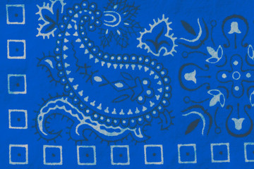 White and Back Design on Blue Bandana