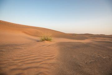 Abandoned ghost village in Arabian desert.