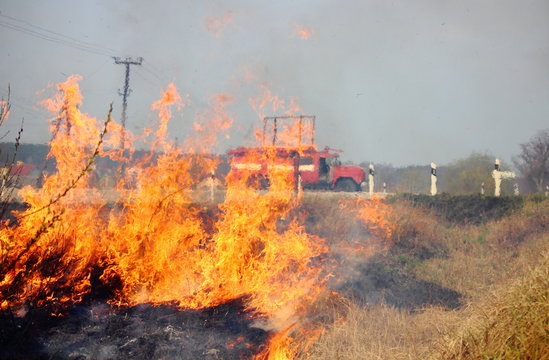 лесной пожар и пожарная машина за городом