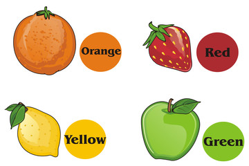 Fruits, food, cartoon, round, words, colored, preschool, many, multicolored, different, illustration, lemon, orange, apple, strawberry,