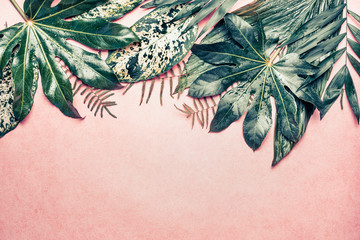 Nature border with various  jungle leaves on pastel pink background, top view