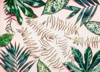 Wall Mural - Creative layout made of various tropical palm and fern leaves on pastel pink background, top view,  flat lay