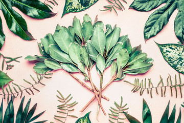 Wall Mural - Creative layout made of tropical palm and fern leaves and  branches on pastel pink background, top view,  flat lay