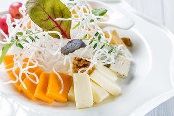 Restaurant cheese plate - various types of cheeses with grapes and walnut on white plate. Close up image with selective focus