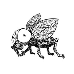 Hand drawn fly. Black and white vector illustration