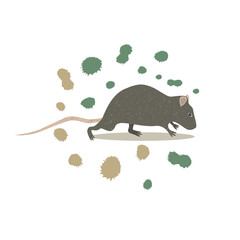 Animal rat clip art, vector