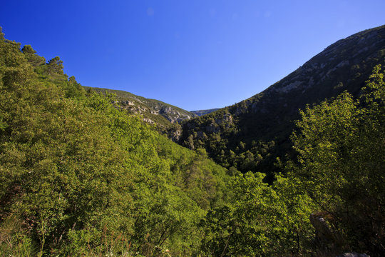 The thickly forested Gorges De Le Siagne, Callian, France