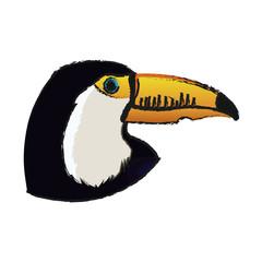 toucan bird icon over white background. vector illustration
