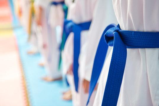 People in martial arts training exercising Taekwondo.