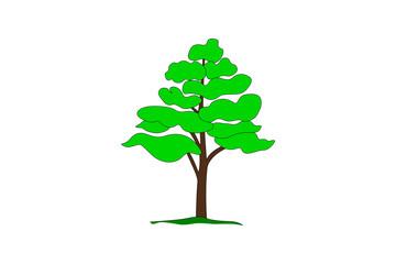 Simple cartoon drawing of a tree, vector illustration.