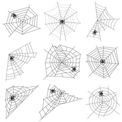Spider web with a spider
