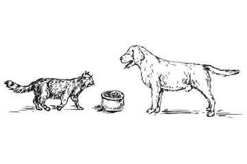 Dog (Labrador) and cat on the contrary, between them bowl with food,  hand drawn doodle, sketch in pop art style, black and white vector illustration