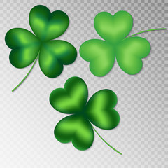Collection of green shamrocks on a transparent background for a festive spring decoration