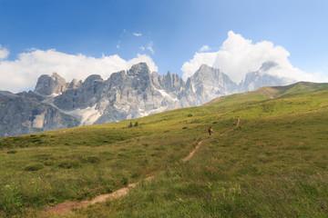 sentiero verso la baita Segantini (Dolomiti)