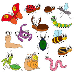Cute small insects set, the collection of coloring book template, the group of outline digital elements.