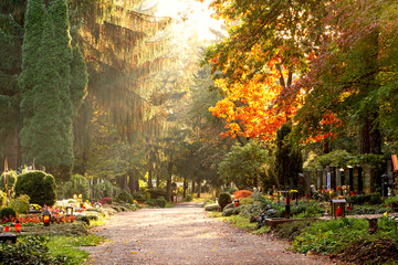 Fotobehang Begraafplaats Herbstliche Szene am Waldfriedhof
