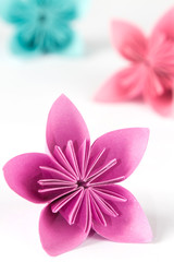 Paper flower isolated on a white background. Close up