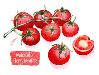 cherry tomatoes branch, watercolor bright illustration for cookbook, recipe, market, menu