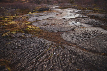 Iceland Volcanic Ground