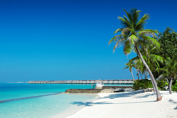 Beautiful nature landscape of tropical island at daytime, Maldives